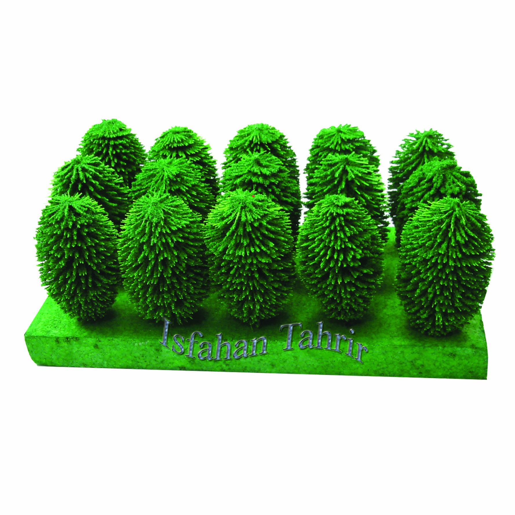 درخت کاج توپی کوهستان کومه کد192