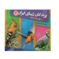 پرندگان زیبای ایران را بهتر بشناسیم 3